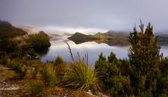 Lake Pedder (jenni 101) Tags: australia lakepedder tasmania foggy landscape mist moody photographybyjen reflections sigmaart18 stillwater