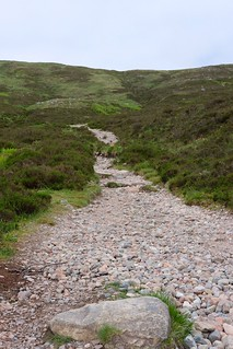 West Highland Way with Dexter