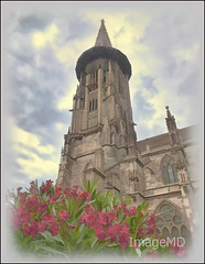 Freiburg Minster (ImageMD) Tags: feiburg minster tower church cathetral germany topaz flowers