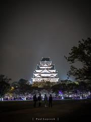 Osaka Castle (amipal) Tags: castle cherryblossom day11 japan night osaka