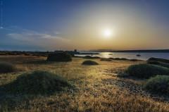Campo de Tabarca - Tabarca's countryside (jmpastorg) Tags: tabarca alicante españa spain santapola 1750 nikon d5100 paisaje landscape atardecer sunset sun sol puestadesol ocaso 2018 verano summer vividstriking
