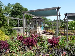 Wheaton, IL, Cantigny Park, Idea Garden (Mary Warren 11.2+ Million Views) Tags: wheatonil cantignypark ideagarden nature flora plants leaves green foliage garden park shed wood bench