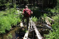 Crossing East Fork Muir Creek before closing this hike out (rozoneill) Tags: sherwood meadows creek rogue river siskiyou national forest oregon hiking buttte beaver