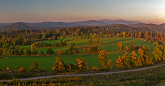 Morning Light (Sroub) Tags: canoneos5dmarkiii zlatohorskáhighlands morning trees dawn daybreak path sky