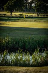 Harburn 0618 12th Approach (Jistfoties) Tags: golf golflandscapes harburngolfcourse harburngolfclub landscapes westlothian