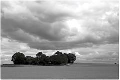 Stralsund bei Prohn - Feld, Baumgruppe, Wolken (tom-schulz) Tags: eosm efm18553556 rawtherapee gimp monochrom bw sw stralsund thomasschulz feld weg baumgruppe himmel wolken frame rahmen sky clouds