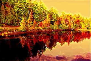 Lake Placid New York  ~ Ausable River at Franklin Road Bridge - Autumn  Reflection