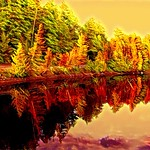 Lake Placid New York  ~ Ausable River at Franklin Road Bridge - Autumn  Reflection thumbnail