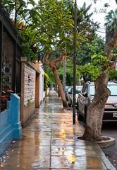 2018 Jumanjiiiii (jeho75) Tags: sony ilce 7m2 zeiss peru lima south america jungle jungel city street wet nass spiegelung reflection