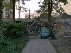 IMAG0284