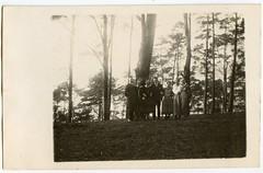 . (Kaïopai°) Tags: wald waldwanderung wandern foret forest bos vintage trees bäume