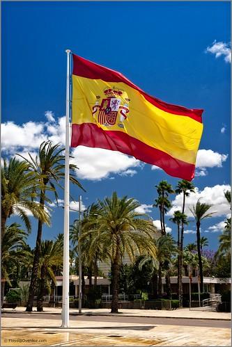 Spanish Flag. Elche.