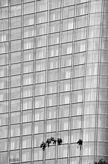 Window Cleaners (Sandrine Vivès-Rotger photography) Tags: london windows cleaners cleaning blackandwhite tall danger working londres