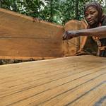 Formation, Recherche, et Environnement dans la Tshopo (FORETS), Democratic Republic of Congo thumbnail