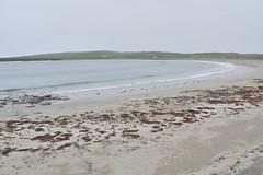 Bay of Skaill (PLawston) Tags: uk britain scotland orkney mainland skara brae neolithic village bay skaill beach