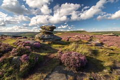 Nearly Purple Time (Andrew Mowbray) Tags: darkpeak overowlertor yorkshiregrit yorkshire heather peakdistrictnationalpark peakdistrict
