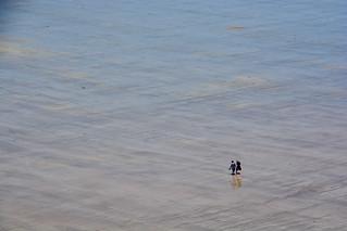 Marcheurs sur la plage Bretagne _3240