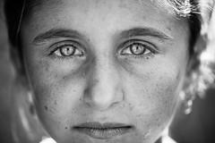 Soulful yazidi eyes (Giulio Magnifico) Tags: nikond800e nikkormicro105mmafsvrf28 nikon portrait eyes yazidi iraq war mosul girl refugeescamp refugees soul soulful deepsoul macro closeup turkey naturallight