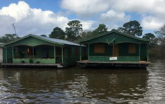 Amazonia (Graça Vargas) Tags: ©2018graçavargasallrightsreserved graçavargas amazonas manaus rio river appleiphone6s iphone palafita