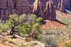 Colorado National Monument '10 (R24KBerg Photos) Tags: coloradonationalmonument colorado landscape 2010 canon nature america usa beauty rocks grandjunction