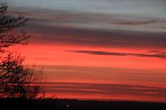 Seckington Sunrise, UK