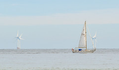 Sailing off Broadstairs 3 (philbarnes4) Tags: yacht windpower electricity generation power powergeneration philbarnes nikond5500 nikon seascape broadstairs dumptongap thanet kent england windturbines sail sailing journey osiris