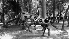 Horse rider. (yaotl_altan) Tags: jinete horserider cavalier reiher cavaleiro всадник chapultepecwald boscodichapultepec chapultepecpark bosquedechapultepec forêtdechapultepec boscdechapultepec florestadechapultepec паркчапультепек escultura sculpture skulptur scultura ваяние cdmx mexicocity ciudaddeméxico mexique mexikostadt mexiko cidadedoméxico cittàdelmessico ciutatdemèxic