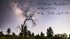 Moonlit Mount Laguna Milky Way Timelapse With Pines and Oak Tree (slworking2) Tags: mountlaguna california timelapse sandiego clevelandnationalforest
