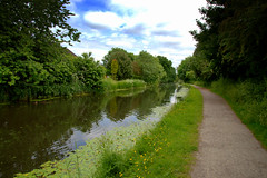 Walk by the canal at Preston (Tony Worrall) Tags: preston lancs lancashire city welovethenorth nw northwest update place location uk england north visit area attraction open stream tour country item greatbritain britain english british gb capture buy stock sell sale outside outdoors caught photo shoot shot picture captured ashtononribble ashton canal wet water waterway weather clouds natural path walkway