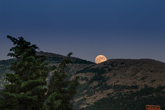 Strawberry moon (fiore_lla4ever) Tags: ngc full moon strawberry fragola luna sardegna canon eos 6d landscape lightroom flower