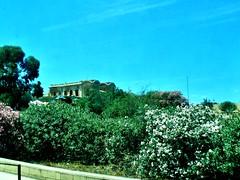 2016-06-08l powrót do Bugibby (27) (aknad0) Tags: malta krajobraz architektura morze