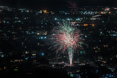 4th of july over toler heights (pbo31) Tags: bayarea eastbay 4thofjuly holiday night black color summer nikon d810 boury pbo31 california fireworks 2018 independenceday pyrotechnics over view kingestateopenspace eastmont oakland alamedacounty illegal rooftops