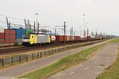 LTE 189 203 - Pernis 07-07-2018. (NovioSites) Tags: lte 189203 tweety siemens es64f4 eurosprinter pernis vondelingenweg trein linz intermodal train loc locomotive rail netherlands