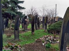 Cemetery of Szatmárcseke (aniko e) Tags: kopjafa kopjafák cemetery temetö bereg szabolcsszatmárbereg hungary szatmárcseke spiritual