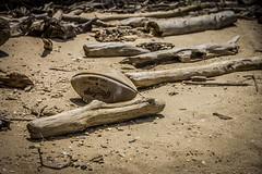 Beach Ball (Airborne Guy) Tags: beach sand summer brown driftwood branches logs football shore