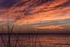 Barnes Park Sunset_51 (pixquik) Tags: sunset afterglow red redsky lakemichigan grass clouds colors