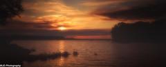 Quiet Time II (mjdrhd) Tags: evening lake park sky color sunset tree fog mist glow