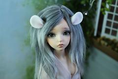 albino mouse ears (Sparrow ♪) Tags: msd minifee mouse ears albino white texture bjd liria