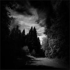 On the Village Road (Olli Kekäläinen) Tags: work4441 nikon d800 photoshop ok6 square ollik 2018 20180704 bw blackandwhite suomi finland woods joutenjärvi kuopio