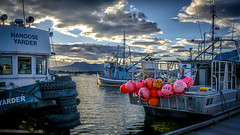 Floats (Paul Rioux) Tags: marine waterfront cowichan bay ocean water commercial fishing village fishermanswharf boat boats vessels floats pink red clouds calm reflection evening sunset prioux explored
