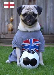 Go England Go!