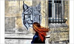 Une rencontre au gré du vent (mamasuco) Tags: nikon d7000 paris graffitis streetart ngc ardif