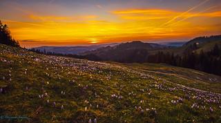 Sunset Emmental Switzerland