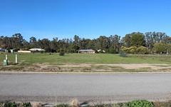 Teddys Lane, Barham NSW