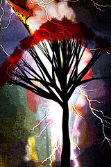 Rayos y truenos (seguicollar) Tags: imagencreativa photomanipulación art arte artecreativo artedigital virginiaseguí árbol rayos truenos tormenta brillos blanco rojo red negro paisaje clima tiempo estación