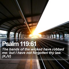Daily Bible Verse - Psalm 119:61 (daily-bible-verse) Tags: motivate happy christianlife creationofgod