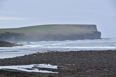Marwick Head (PLawston) Tags: uk britain scotland orkney mainland palace birsay marwick head cliffs beach grey seals