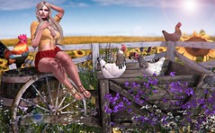 On a hot Summerday (nannja.panana) Tags: tmcreation birth catwa dubaievent entangled exxess ikon lilosfit maitreya nannjapanana posefair promagic safira tlchomecollection vanityevent secondlife summer