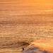Bells Beach Big Surf-37