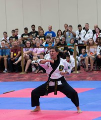 IMG_8518 (bridgewc) Tags: karate cns chuck norris system martialarts ufaf
